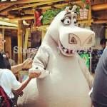 gloria hippo Mascot Costume