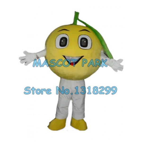 cute orange Mascot Costume